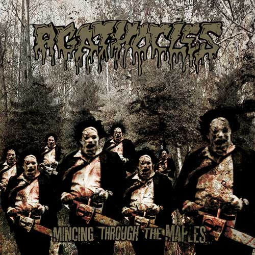 """AGATHOCLES """"mincing through the maples"""""""